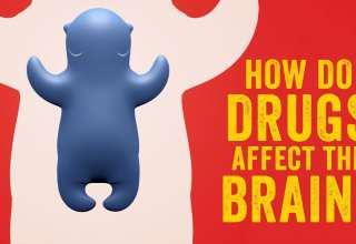 How do drugs affect the brain