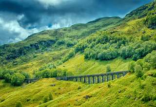 Railway Bridge Grass Trees Wallpaper