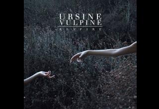 Ursine Vulpine - Respire