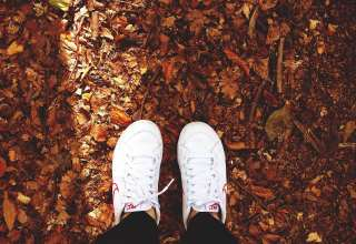 Shoe White in Fall