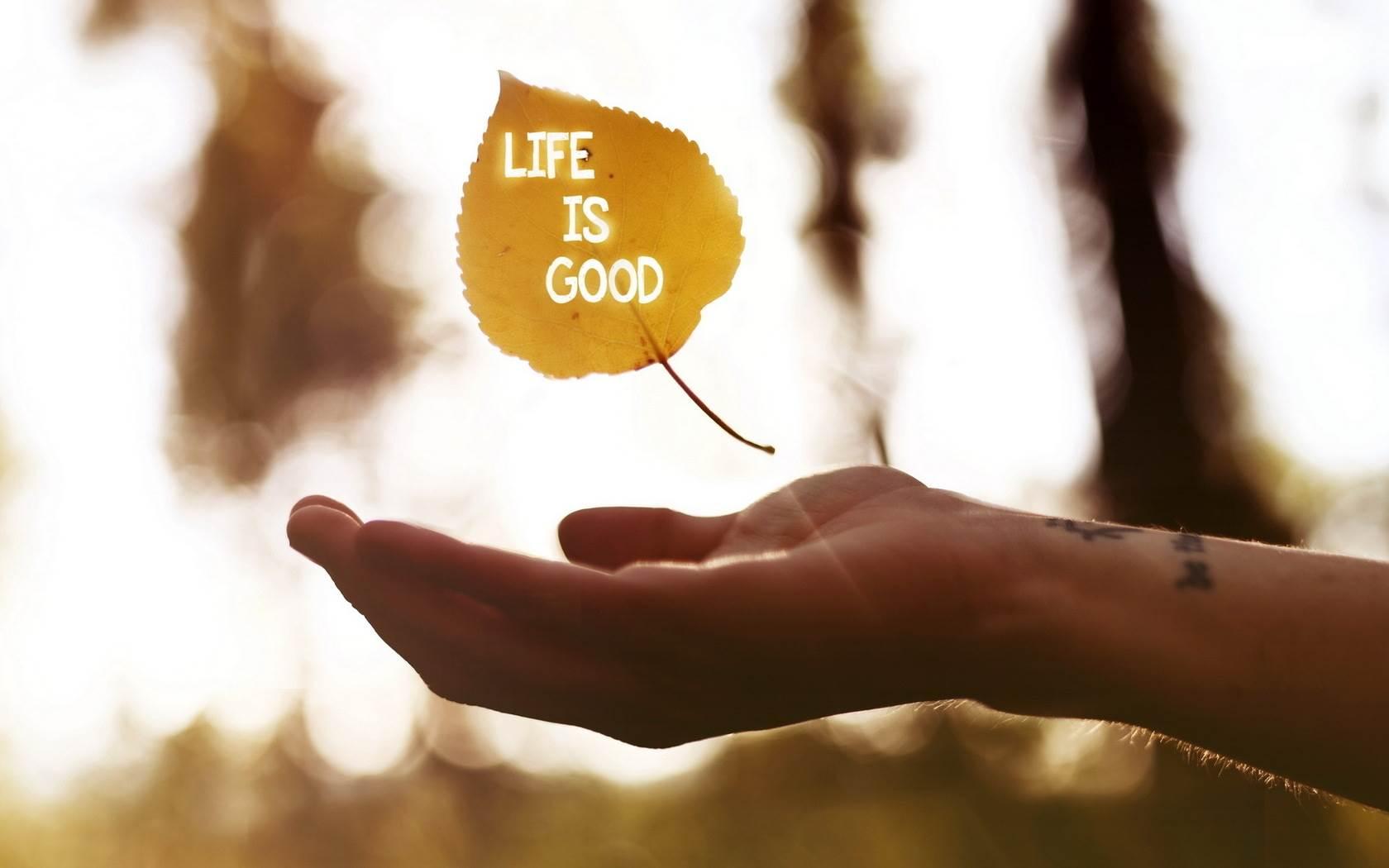 Hand Life Is Good Leaf