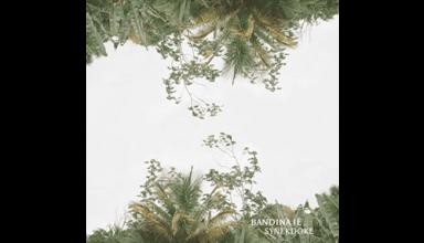 Bandina-ie-Synekdoke