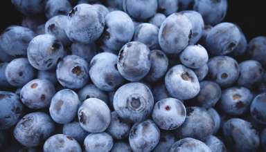 Blueberry Berries Wallpaper