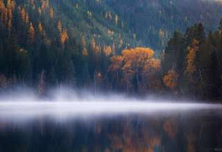 Echo Lake Forest Trees Fog Columbia Autumn 5k Wallpaper