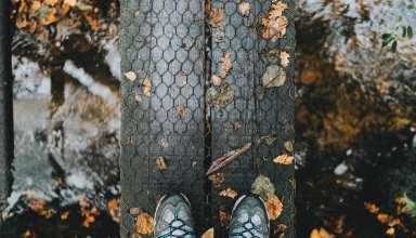 Feet Autumn Foliage Rain Wallpaper
