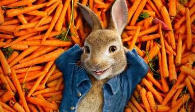 Peter Rabbit 2018 Animation 4k Wallpaper
