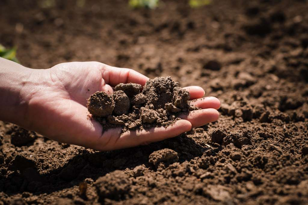 Soil cultivated dirt earth ground brown land background for Earth or soil
