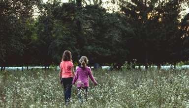 Children Field Walk Friends Wallpaper