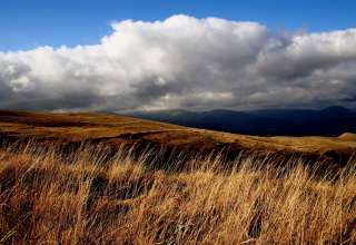 Field Grass Sky Clouds Wallpaper