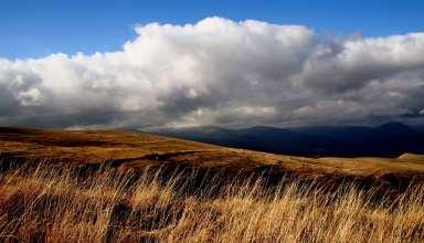 Field Grass Sky Clouds Wallpaper