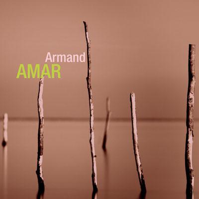 ArmandAmar-Retrospective