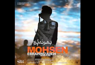 Mohsen-Ebrahimzadeh-Bahoone-Pore