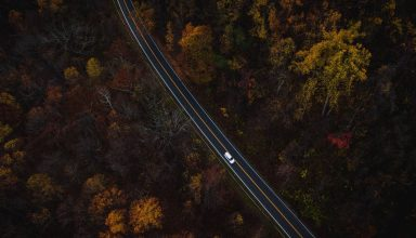 Auto Road View From Above Trees Wallpaper