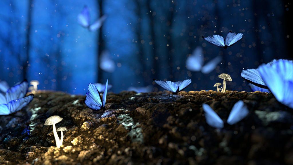 Butterfly Mushrooms Forest Fantasy Wallpaper