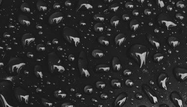 Drops Close-up Wallpaper