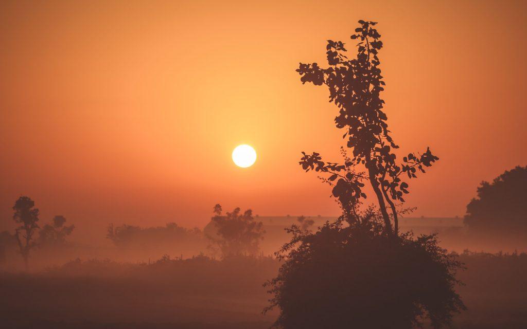 Foggy Sunrise 4k Wallpaper