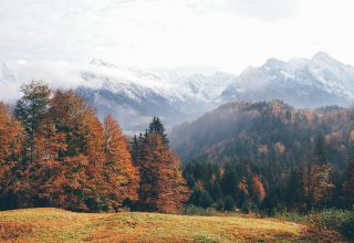 Oberstdorf Germany Mountains Autumn Forest 4k Wallpaper