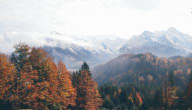Oberstdorf Germany Mountains Autumn Forest 4k Wallpaper