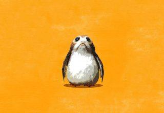 Porgs Star Wars: The Last Jedi Wallpaper
