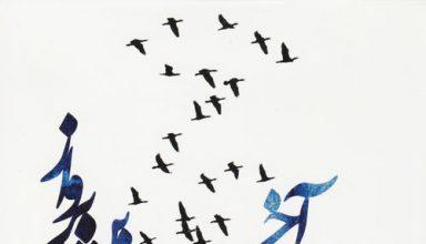 دانلود آلبوم موسیقی The Last Flight توسط Koorosh Matin