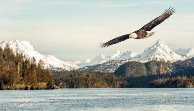 Eagle Mountains Lake Wallpaper