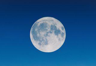 Full Moon Illustration Wallpaper