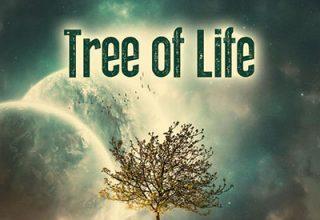 دانلود آلبوم موسیقی Tree of Life توسط Audiomachine
