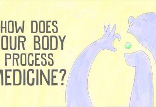 دانستنیها: دارو ها در بدن شما چگونه عمل میکنند