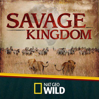 دانلود موسیقی متن سریال Savage Kingdom