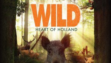 دانلود موسیقی متن فیلم Wild
