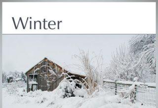 دانلود آلبوم موسیقی Winter توسط Greg Maroney