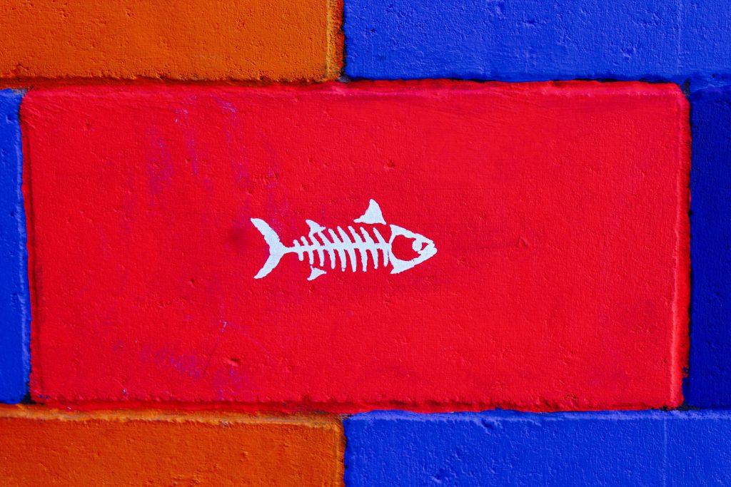 Fish Art Wall Paint Wallpaper
