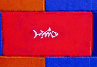 Fish Art Wall Paint Wallpaper