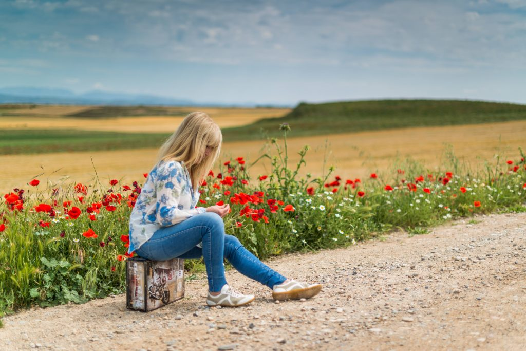 Girl Near Red Petal Flowers at Daytime Wallpaper
