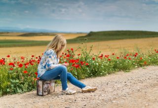 Girl Near Red Petal Flowers at Daytime Wallpaper