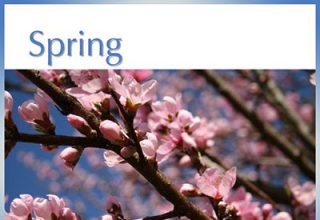 دانلود آلبوم موسیقی Spring توسط Greg Maroney