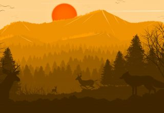 Deer Forest Fox Sun Red Trees Birds Wallpaper