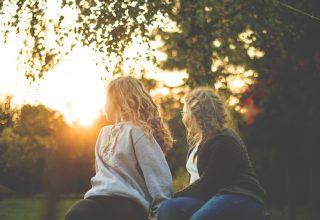 Two Women Sitting Near Green Tree During Sunset Wallpaper