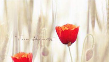 دانلود قطعه موسیقی Two Hearts توسط Michael Logozar