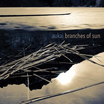 دانلود آلبوم موسیقی Branches of Sun توسط Aukai