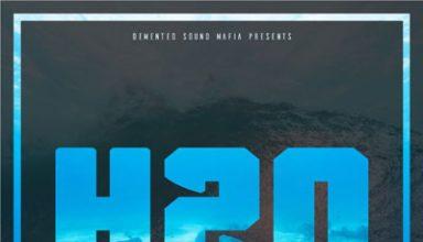 دانلود آلبوم موسیقی H20 توسط Demented Sound Mafia