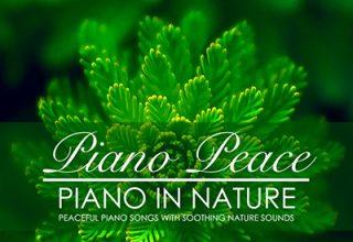 دانلود آلبوم موسیقی Piano in Nature توسط Piano Peace