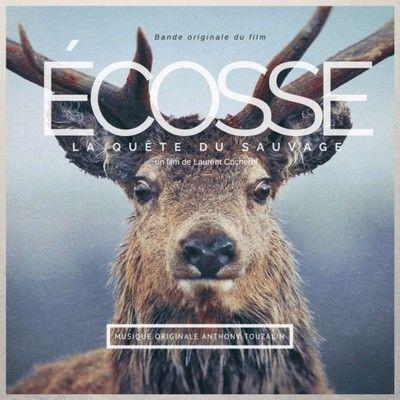 دانلود موسیقی متن فیلم Ecosse, la quête du sauvage