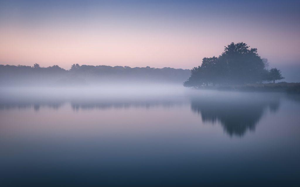 Foggy Richmond Park Morning Cold Reflections London 5k Wallpaper