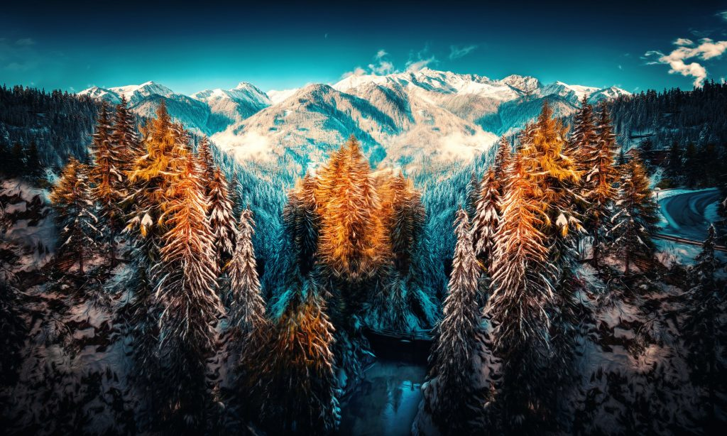 Snow Landscape Mountains Trees Forest Wallpaper