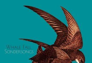 دانلود آلبوم موسیقی Sondersongs توسط Whale Fall