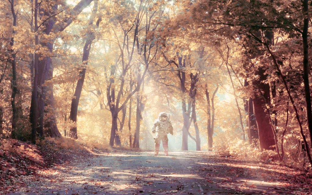 Astronaut in Autumn Wallpaper