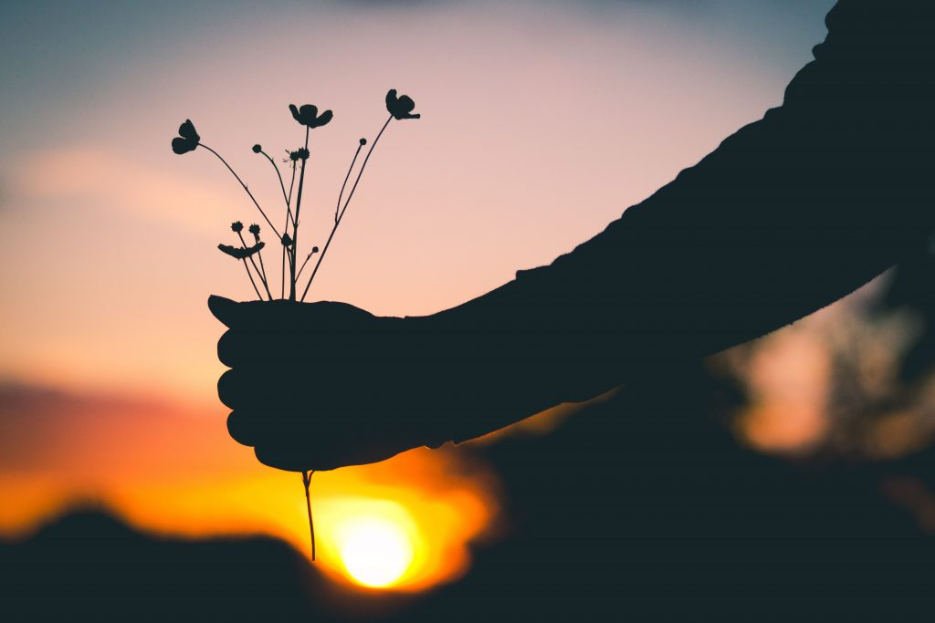 Hand Flowers Silhouette Wallpaper
