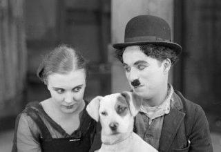 دانلود موسیقی متن فیلم A Dog's Life