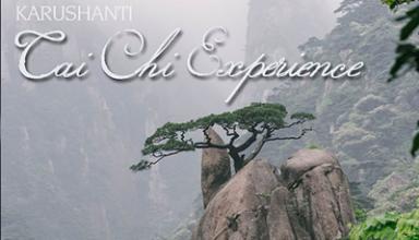 دانلود آلبوم موسیقی Tai Chi Experience توسط Karushanti